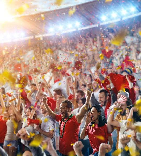 Crowd cheering at stadium event